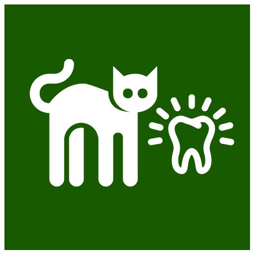 Ultradźwiękowe usuwanie kamienia nazębnego, ekstrakcje zębów, higiena jamy ustnej zwierząt, weterynarz łomża, alfa gabinet weterynaryjny łomża